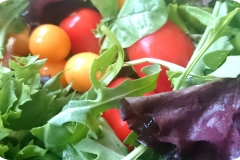 Nr. 86 - Frische Blattsalate